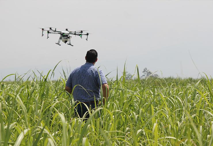 Quand l'agriculture se met au big data...