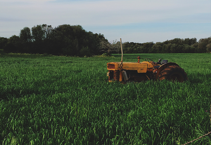 Ouvrier agricole : un métier très demandé