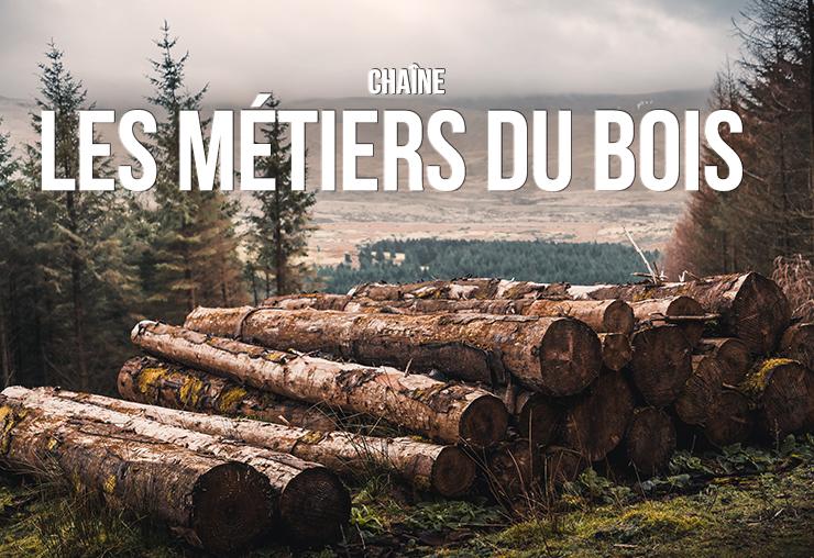 Le secteur du bois et ses métiers : que d'opportunités !